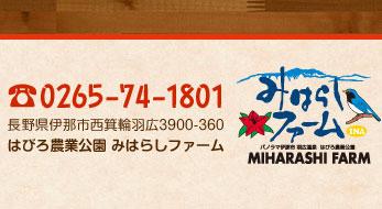 TEL.0265-74-1801